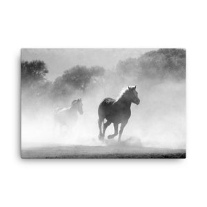 Perfect Barefoot Horse Art Canvas