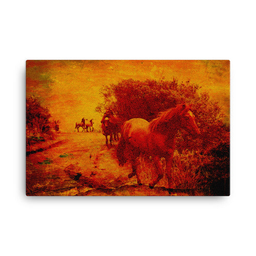 Experience Training Horse Art Canvas