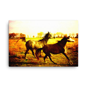 Memorable Occasion Horse Art Canvas