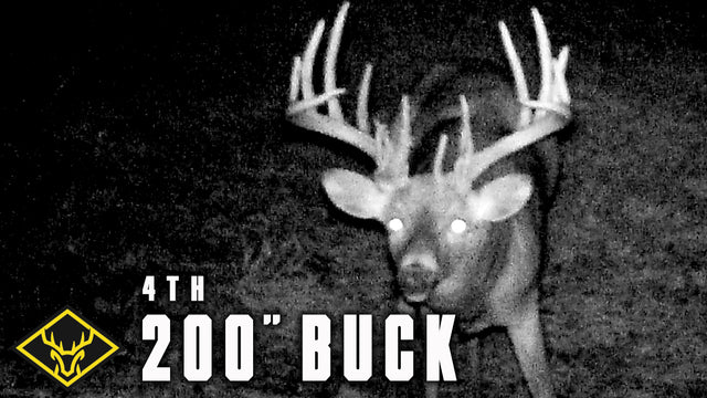 The Hunt for #4 (200 inch Buck) - Part 1