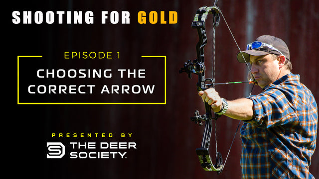 Shooting for Gold: Choosing the Correct Arrow (Ep.1)
