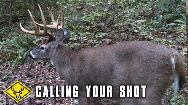 Calling Your Shot - Big OHIO Buck 20 yards and Closing...