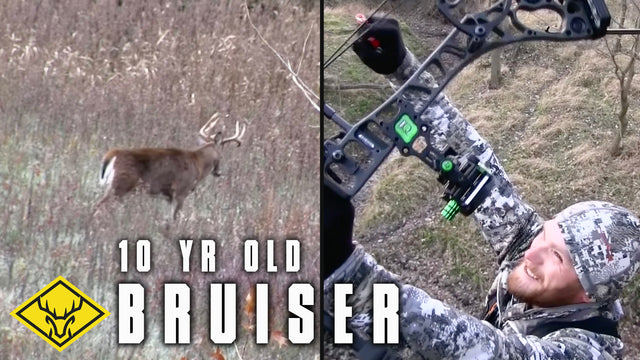 10yr. old Bruiser Buck | CRP + Does = Big Buck Down!