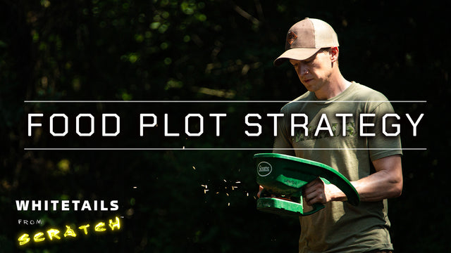 Food Plot Strategy: Choosing WHERE and WHAT to plant to attract Big Bucks!