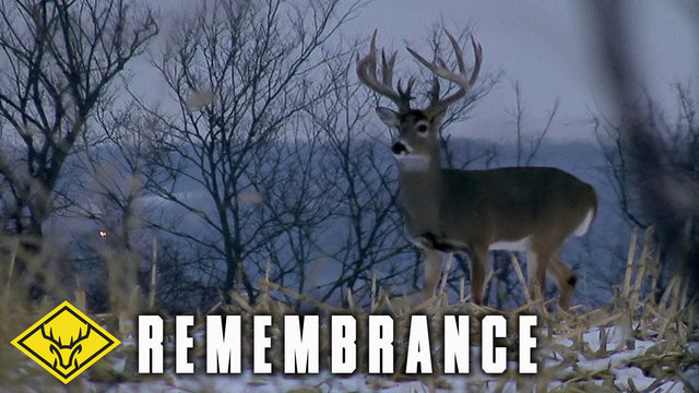 "Remembrance | 200"" Buck Sent Down from Above..."