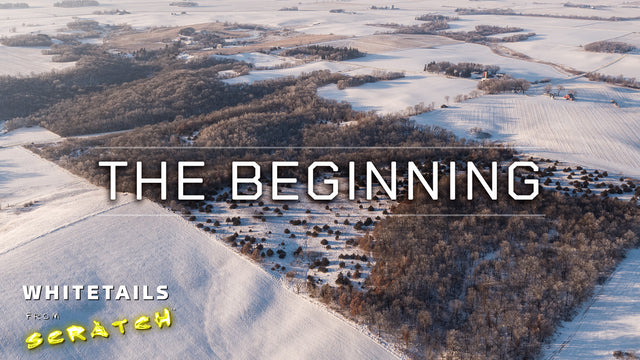 The Beginning: Whitetails from Scratch (Episode 1)
