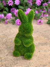 Load image into Gallery viewer, Green Bunny