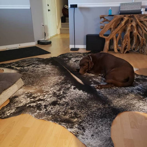 These inexpensive cowhide rugs are hypoallergenic and great for high traffic areas, we ship free all over Wisconsin	Dells within four business days.