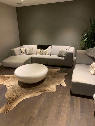 The natural patterns and the little dots here and there makeup to the beauty of these rugs and make them stand out from the usual floral ones. The challenge arrives when you start to clean a cowhide rug.