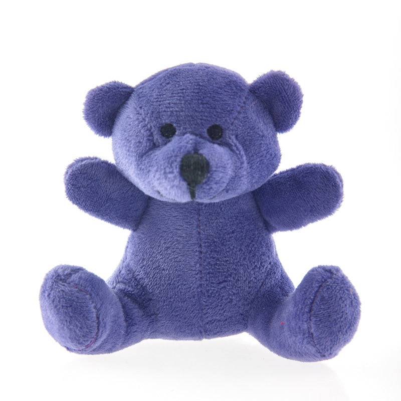 Purple Rainbow Bear