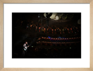 Eels, 2014, On Stage Photo Print