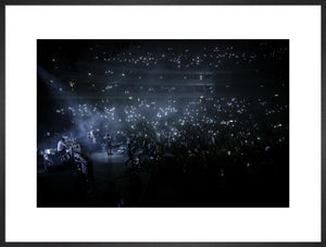 The 1975, 2014, Audience View Photo Print - Royal Albert Hall
