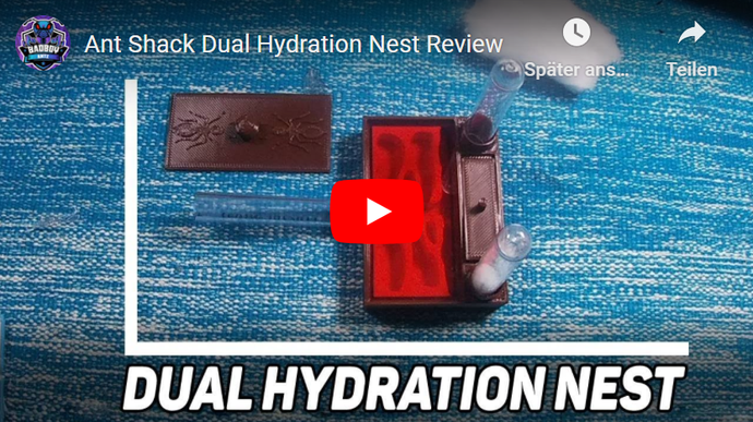 Ant Shack Dual Hydration Nest Review
