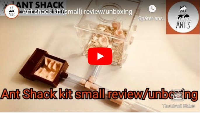 ANT SHACK Kit (small) Review/Unboxing