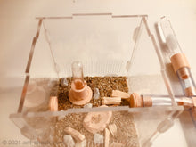 Load image into Gallery viewer, Natural Ant Habitat Kit - Small All-In-One