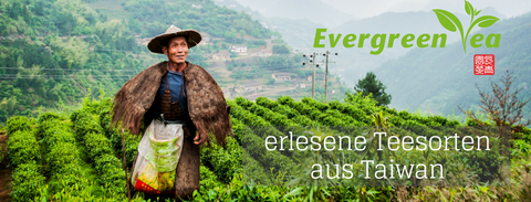 Evergreen Teashop - erlesene Teesorten aus Taiwan