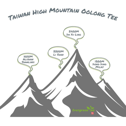 Taiwan High Mountain Oolong Tee Anbaugebiete Höhe
