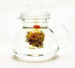 Teekanne aus Glas mit Filter - Evergreen Teashop