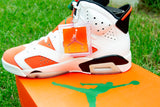 "Air Jordan 6 Retro ""Gatorade Like Mike"""