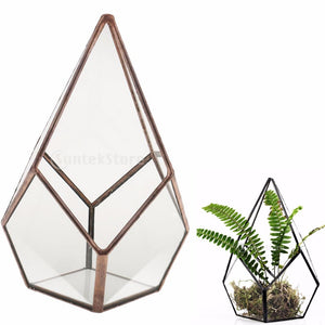 Diamond Geometric Glass Terrarium