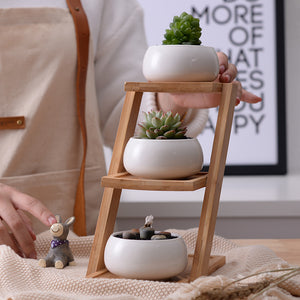 White Ceramic Planter Set of 3 with 3-Tier Bamboo Shelf
