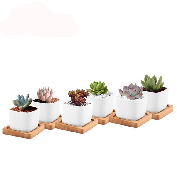 Mini Square Ceramic Flower Planters with Bamboo Tray