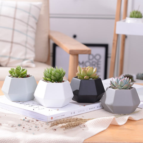 4 Piece Wide Hexagon Ceramic Planters Set