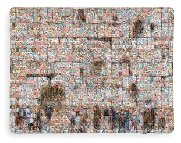 Western Wall - Blanket - ALEFBET - THE HEBREW LETTERS ART GALLERY