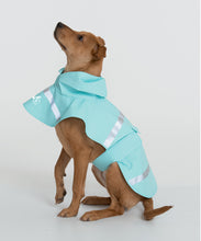 Load image into Gallery viewer, Dog's New Englander Rain Jacket - Aqua