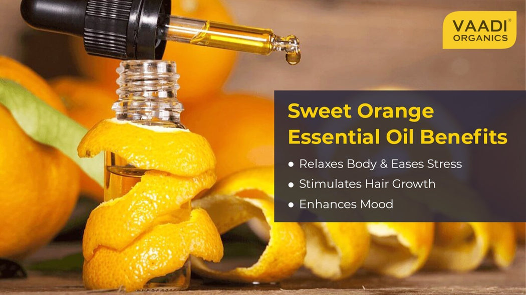 Organic Sweet Orange Essential Oil - Vitamin C Reduces Hairfall, Improves Skin Complexion, Enhances Mood, Loosens Tired Muscles - 100% Pure Therapeutic Grade (10 ml/ 0.33 oz)