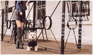 mod-parka-dog-coats-posh-pawz-fashion