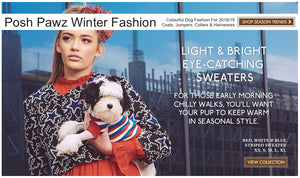 Winter-jumpers-banner-posh-pawz-fashion