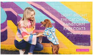 rainstorm-dog-coats-posh-pawz-fashion