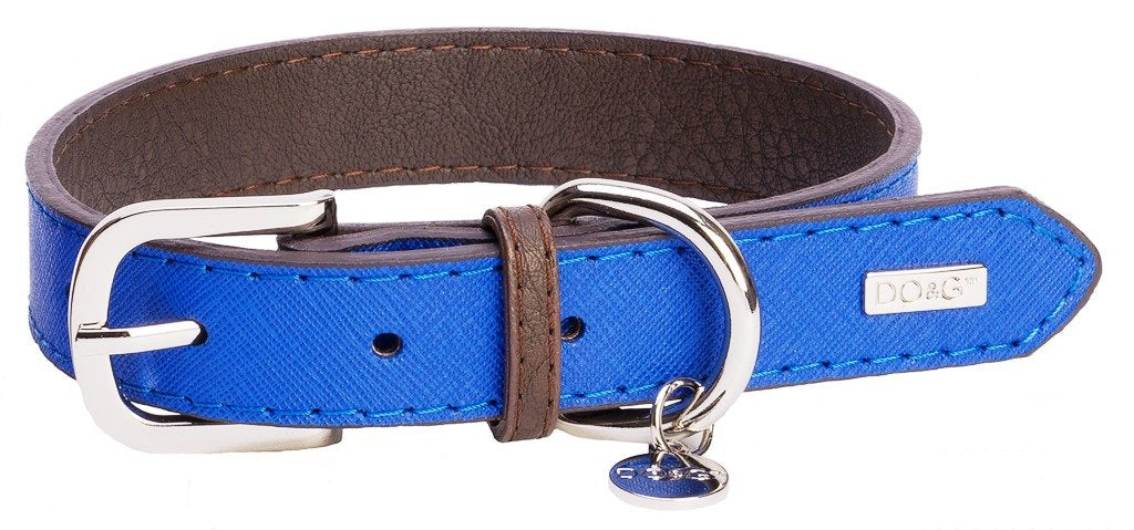 Accent Leather Dog Collar In Royal Blue - Posh Pawz Fashion