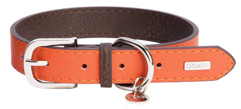 Accent Leather Dog Collar In Orange - Posh Pawz Fashion