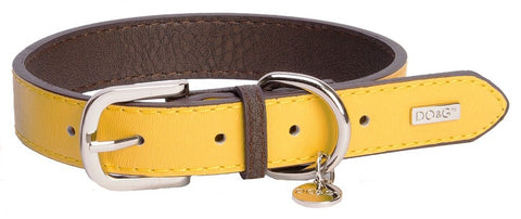 Accent Leather Dog Collar In Yellow - Posh Pawz Fashion