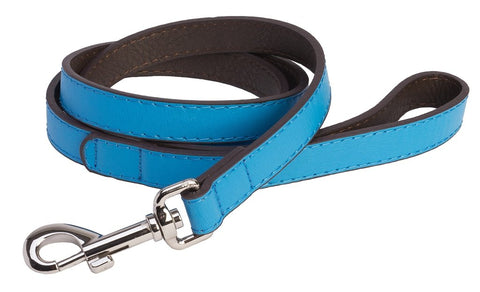 Accent Leather Dog Lead In Cyan Blue - Posh Pawz Fashion
