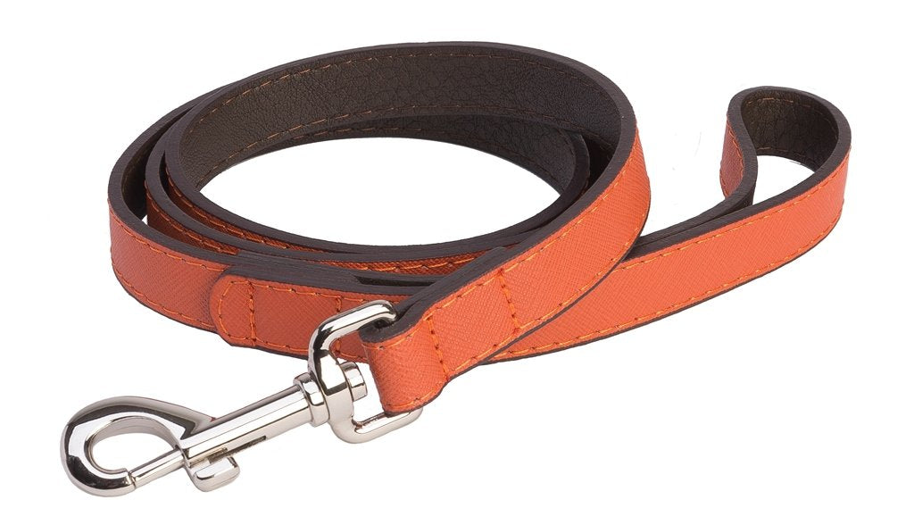 Accent Leather Dog Lead In Orange - Posh Pawz Fashion