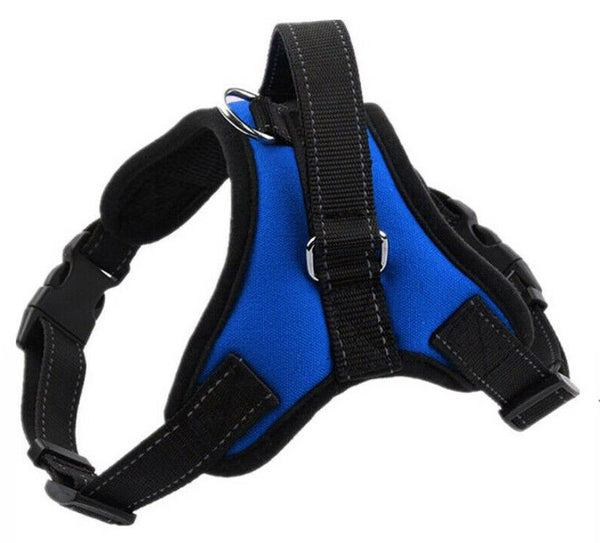 Blue Padded No Pull Control Dog Harness - Posh Pawz Fashion