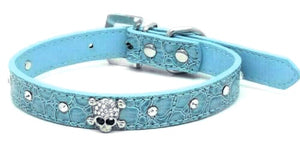 Diamante Skull Small Breed Dog Collar In Blue - Posh Pawz Fashion