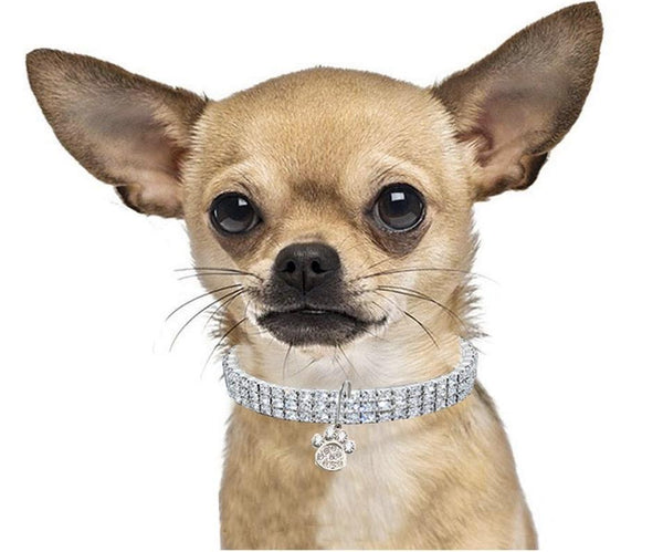 Clear Rhinestone Crystal Pet Necklace With Paw Pendant - Posh Pawz Fashion