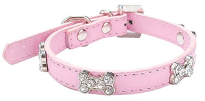 Crystal Bones Small Breed Dog Collar Baby Pink - Posh Pawz Fashion