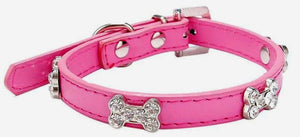 Crystal Bones Small Breed Dog Collar Hot Pink - Posh Pawz Fashion