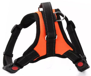 Orange Padded No Pull Control Dog Harness - Posh Pawz Fashion