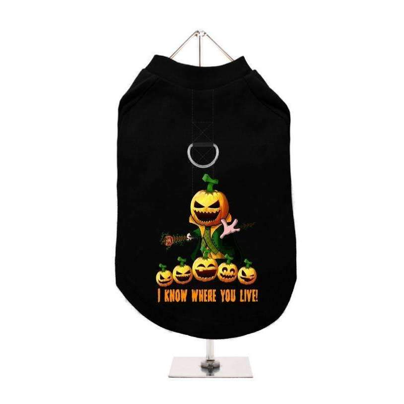 Halloween Pumpkin Head Harness Lined Dog T-Shirt - Posh Pawz Fashion
