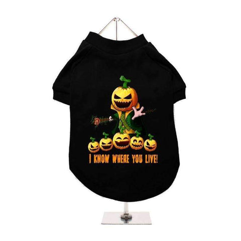 Halloween Pumpkin Head Dog T-Shirt - Posh Pawz Fashion