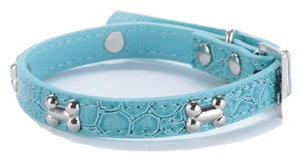 Silver Bones Puppy Dog Collar In Blue - Posh Pawz Fashion