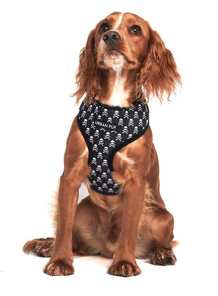 Skull And Crossbones Designer Dog Harness - Posh Pawz Fashion