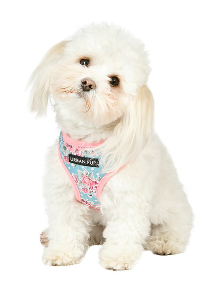 Vintage Rose Floral Dog Harness2 - Posh Pawz Fashion