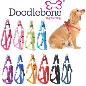 Bold Funky Adjustable Dog Harnesses - Posh Pawz Fashion